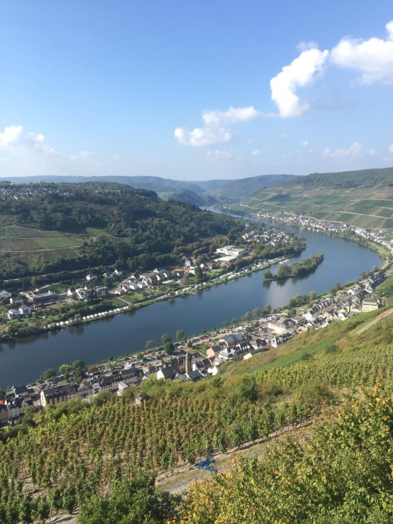 Wanderwege Zell Mosel Weinberg